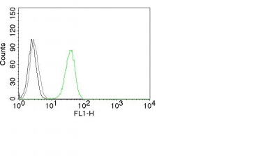 FC -  CD31 / PECAM-1 (Endothelial Cell Marker) Antibody AH12060