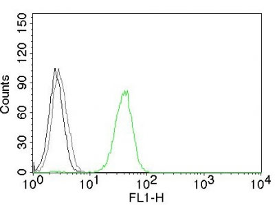 FC -  CD31 / PECAM-1 (Endothelial Cell Marker) Antibody AH12063-7