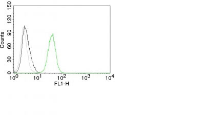 FC -  CD31 / PECAM-1 (Endothelial Cell Marker) Antibody - With BSA and Azide AH12070