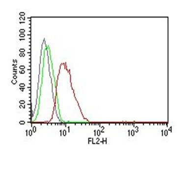 FC -  Cyclin D1 (G1-Cyclin & Mantle Cell Marker) Antibody AH12236