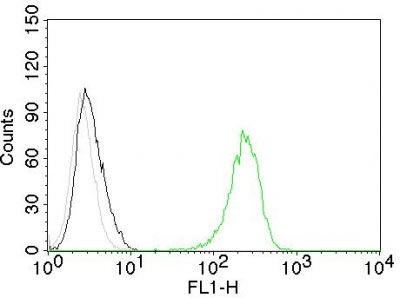 FC -  CD71 / Transferrin Receptor (TFRC) Antibody - Without BSA and Azide AH12386-100