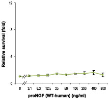 E - proNGF Protein (WT-human) PG10033-005