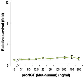 E - proNGF Protein (Mut-human) PG10034-001