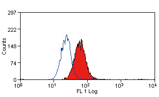 FC - Anti Human Cytochrome B245 Light Chain Antibody, clone CS9  ABD12594