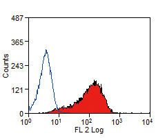FC - Anti Mouse Delta-Like Protein 1 Antibody, clone HMD1-5  ABD12726