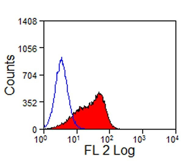 FC - Anti Mouse Delta-Like Protein 4 Antibody, clone HMD4-2  ABD12727
