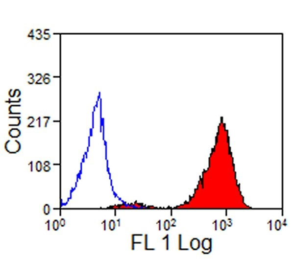 FC - Anti Sheep MHC Class I Antibody, clone VPM19  ABD12910