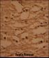 HTATSF1 Antibody (N-term)