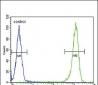 MC2R Antibody (C-term)