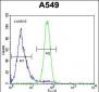 FSTL1 Antibody (C-term)