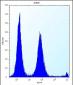 POLR2G Antibody (C-term)